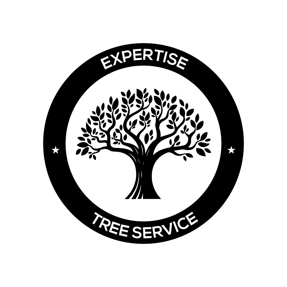 How much does it cost to cut a tree? | expertisetreeservice
